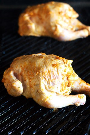 Cornish Hen Recipe with a Mediterranean Garlic Spice Rub | The Mediterranean Dish. Fall-off-the-bone tender roasted hens with garlic, lime juice and Mediterranean spices like nutmeg, allspice and hot paprika. Takes the humble little chickens to a new level!