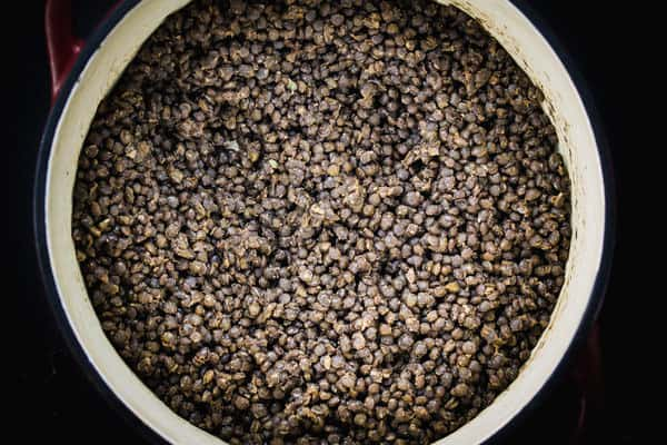 Bowl of uncooked lentils