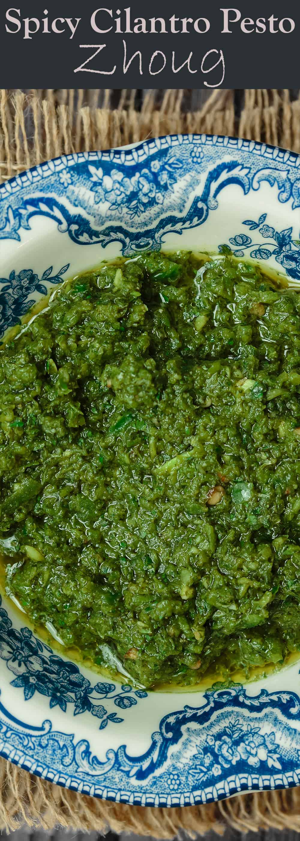 Zhoug: Spicy Cilantro Pesto | The Mediterranean Dish. A fragrant, spicy green sauce with fresh cilantro, parsley, Middle Eastern spices and olive oil. Think cilantro pesto with a nice kick. Great on all sorts of sandwiches, stirred into soup, or as a topping to your meat! See the recipe on TheMediterraneanDish.com