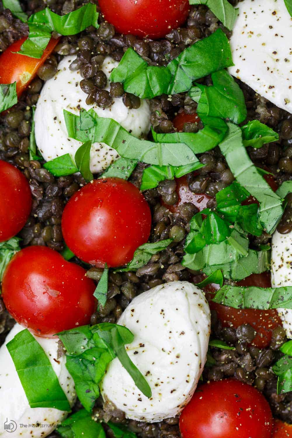 Close-up of lentils, tomatoes and cheese