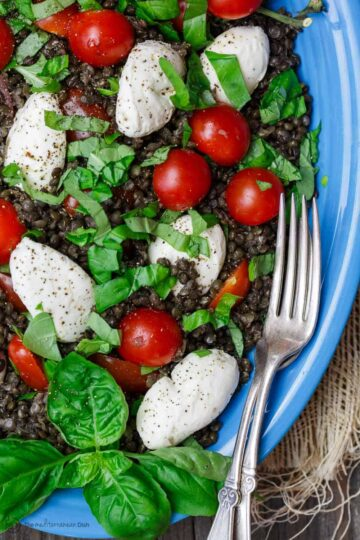 Caprese Lentil Salad Recipe | The Mediterranean Dish. A satisfying, hearty caprese salad on top of a bed of creamy black lentils. This caprese lentil salad recipe is the perfect side, appetizer, or even lunch. From TheMediterranenaDish.com #capresesalad #lentilsalad #mediterraneandiet #lentils #lentilrecipe #caprese #saladrecipe #mediterraneanfood #healthyrecipes #glutenfreerecipes #vegetarianrecipes
