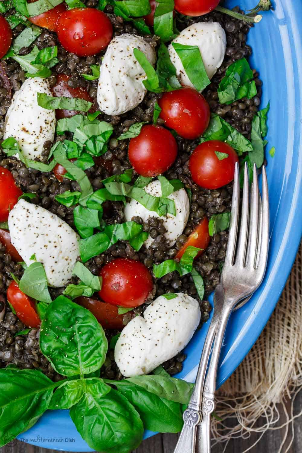 Caprese Lentil Salad with tomatoes and mozzarella cheese