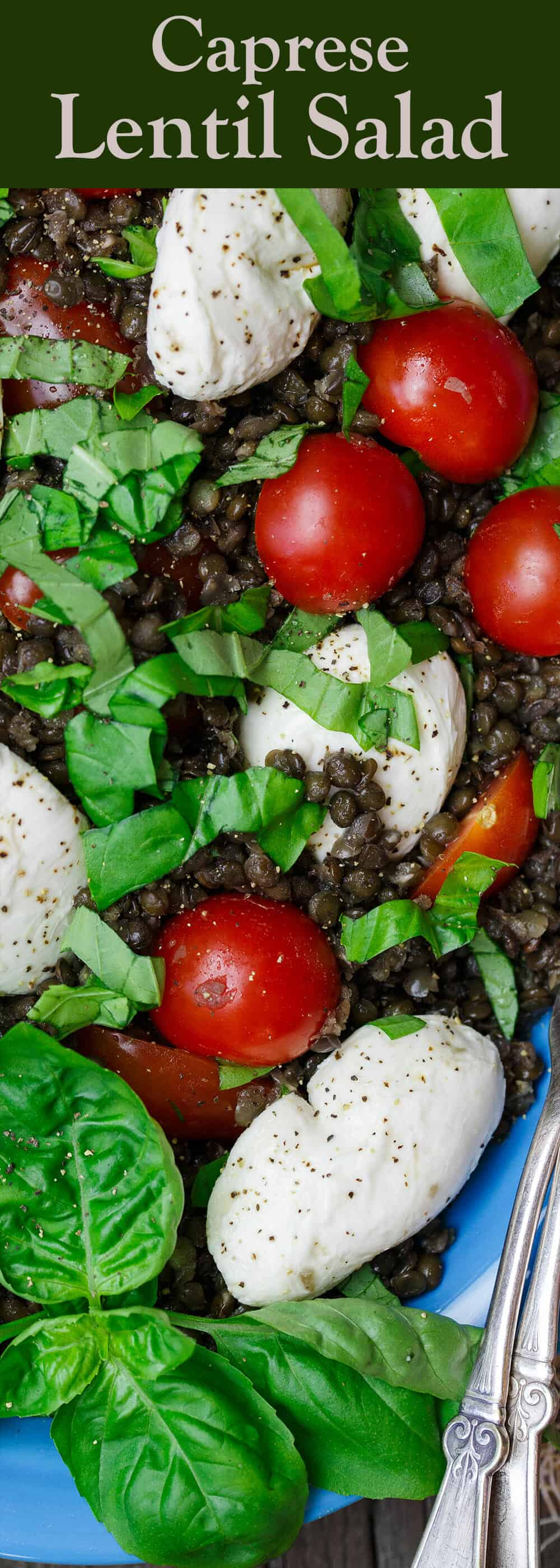 Caprese Lentil Salad Recipe   The Mediterranean Dish. A satisfying, hearty caprese salad on top of a bed of creamy black lentils. This caprese lentil salad recipe is the perfect side, appetizer, or even lunch. From TheMediterranenaDish.com #capresesalad #lentilsalad #mediterraneandiet #lentils #lentilrecipe #caprese #saladrecipe #mediterraneanfood #healthyrecipes #glutenfreerecipes #vegetarianrecipes