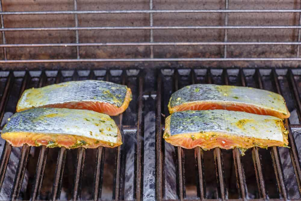 Salmon fillets placed on hot grill, flesh-side down for searing
