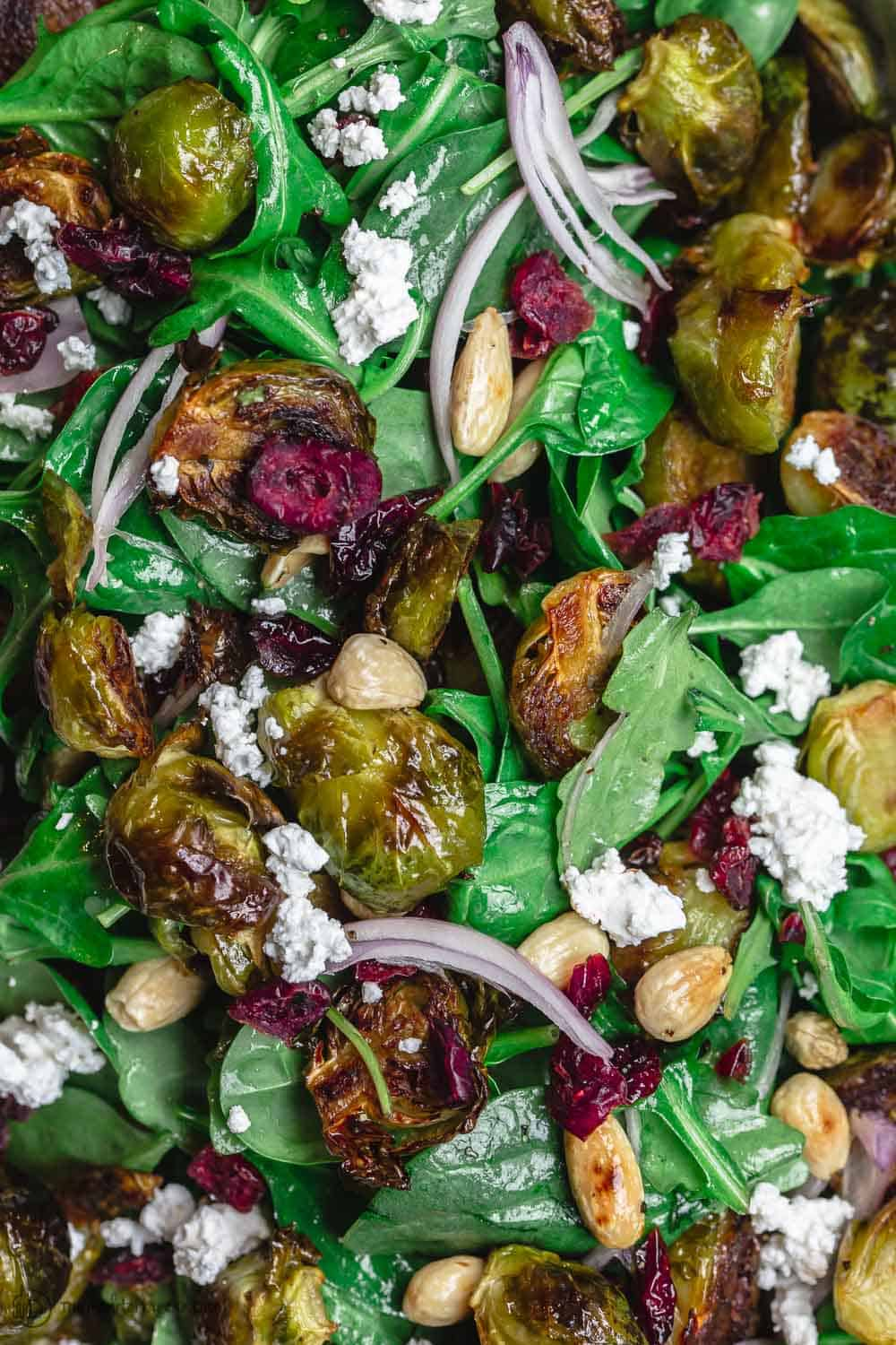 Close up roasted brussels sprouts salad with arugula, spinach, feta, cranberries, almonds