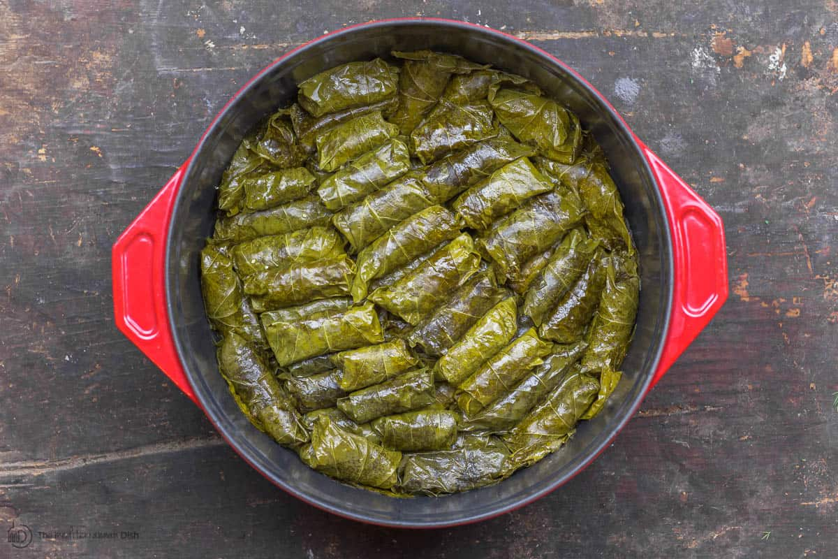 Cooked Stuffed Grape leaves dolmas in pot