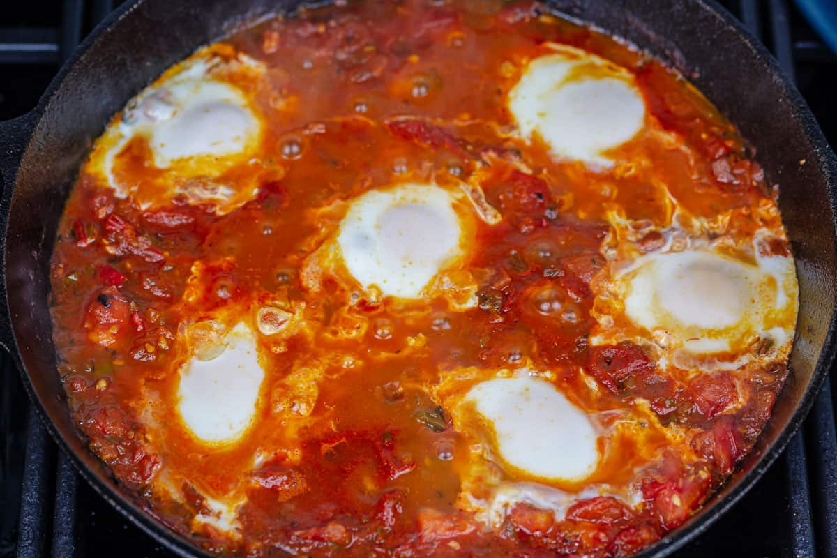 eggs cooked in the shakshuka sauce