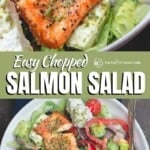 pin image 2 for salmon salad