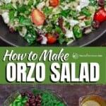 pin image 1 orzo salad