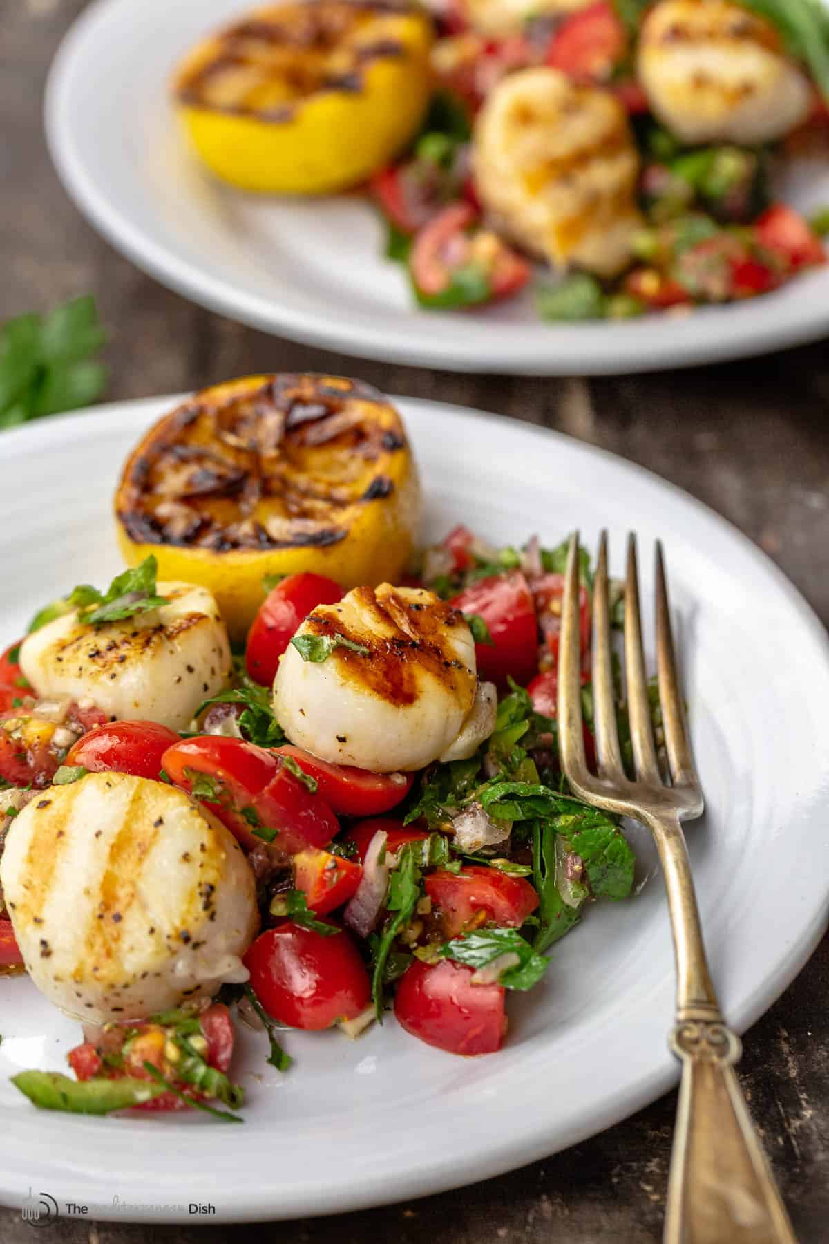 A plate of scallops over Mediterranean-style salsa