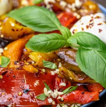 Roasted red pepper appetizer with burrata